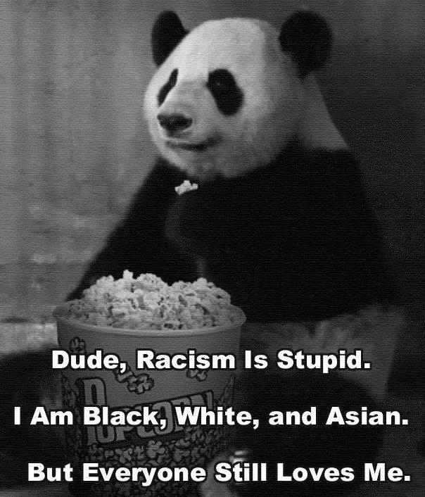 Is a Panda racist